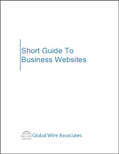 Short Guide to Business Websites Book Cover